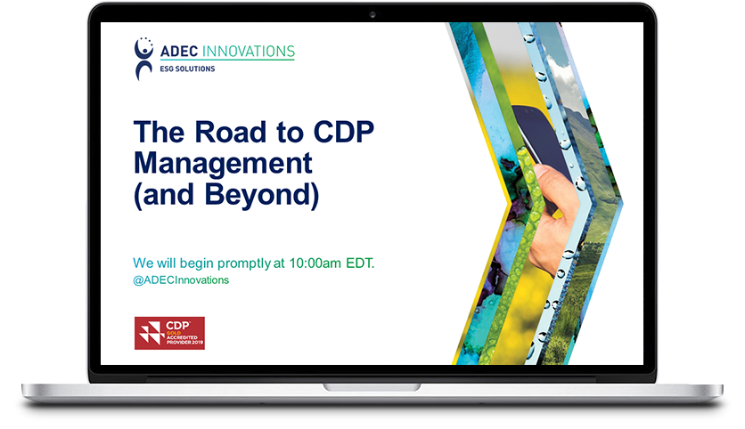 The Road to CDP Management (and Beyond) Thumbnail